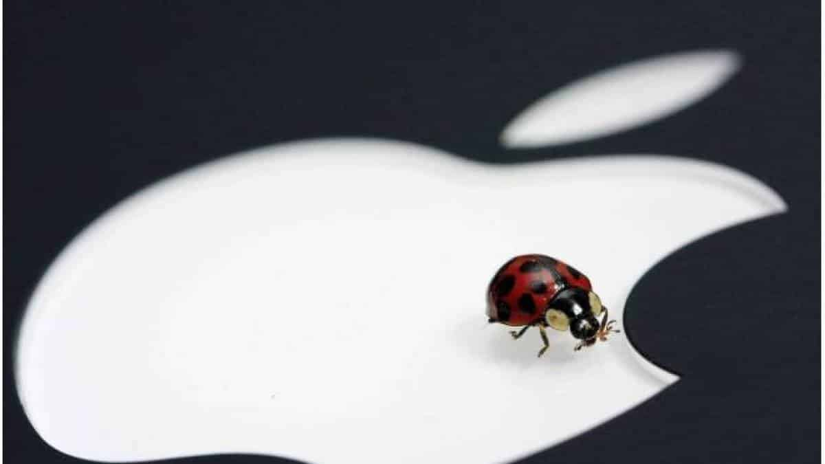 apple bug