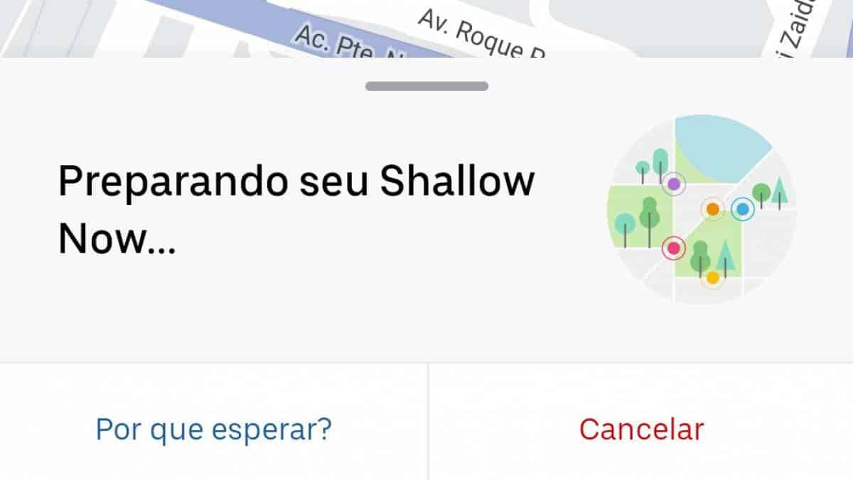 shallow now