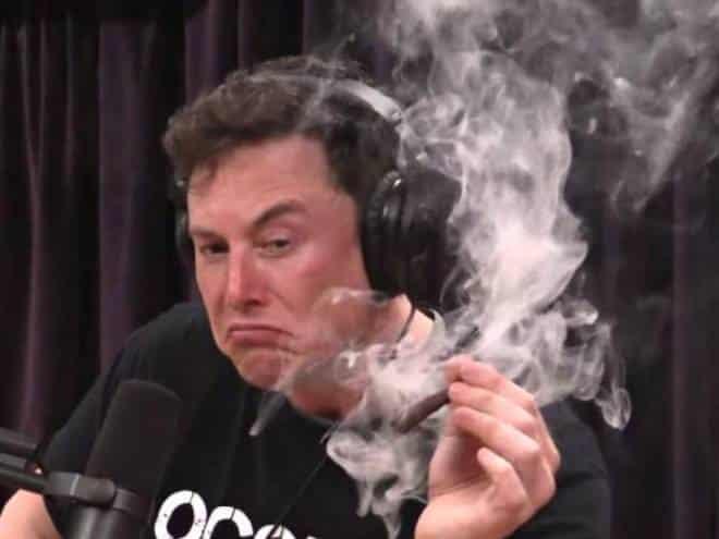 Cigarro de maconha que Elon Musk fumou custou US$ 5 milhões aos cidadãos dos EUA