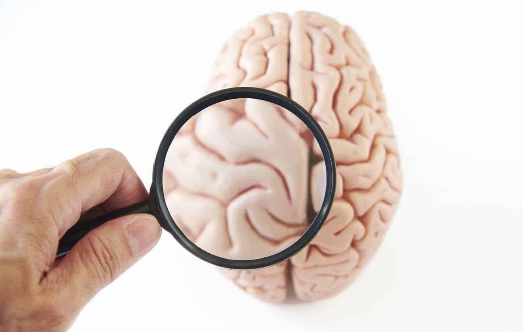 Estímulo no cérebro pode acordar pacientes do coma