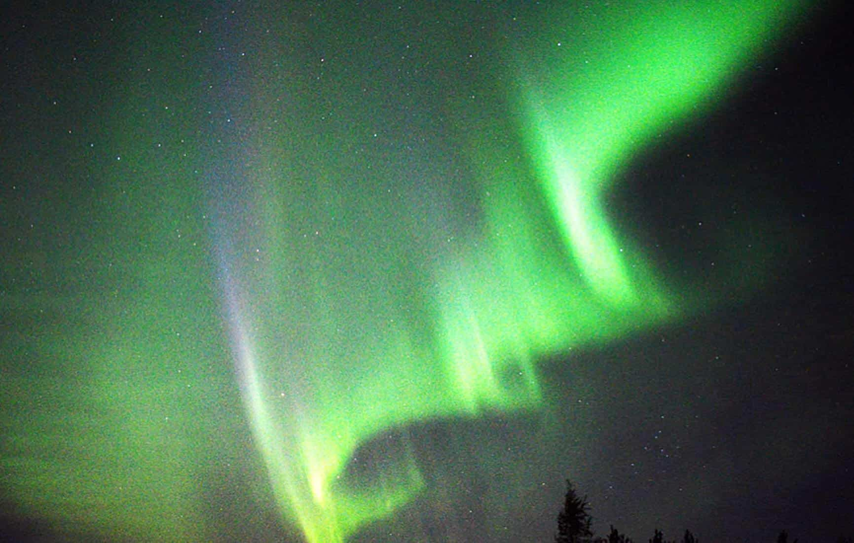 Canal reúne webcams com belas imagens da natureza