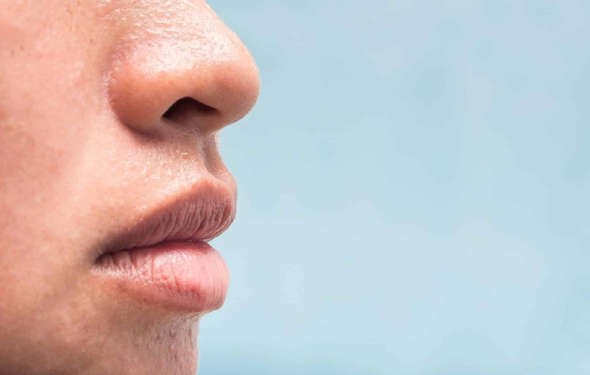 Cientistas decodificam como o cérebro distingue cheiros