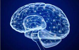 Projeto deve ligar cérebro a máquinas para aumentar inteligência em 8 anos