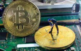 Nvidia é a grande vencedora da corrida da Bitcoin