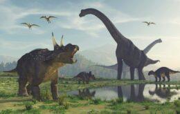 Pesquisa do Google coloca dinossauros no mundo real; entenda