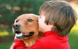Estudo aponta que DNA determina preferência por cachorro ou gato