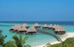 Resort nas Maldivas oferece duas semanas com tudo pago para você cuidar das tartarugas do local