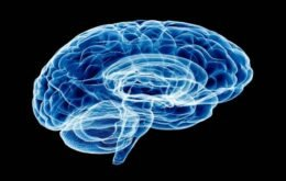 Células cerebrais são manipuladas por celular