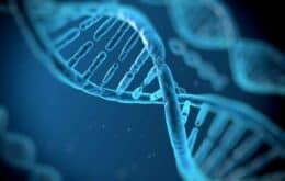 Cientistas desenvolvem aplicativo de namoro baseado no DNA