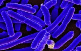 Molécula fedorenta e tóxica pode indicar vida extraterrestre