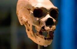 Cientistas encontram 'população fantasma' da antiguidade