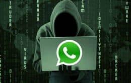 Procon notifica WhatsApp, OLX e Mercado Livre por serem usados em golpe