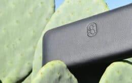 Empresários mexicanos criam couro à base de cacto