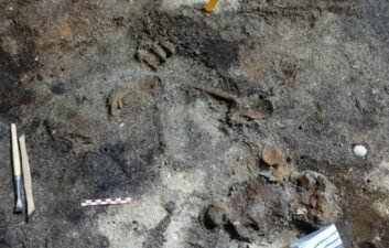 Norwegian couple discover Viking tomb in their own home