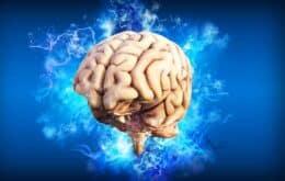 Cientistas querem usar exame de sangue para detectar dano cerebral