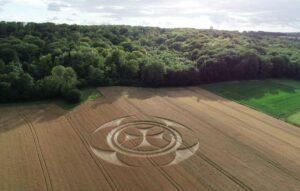 Plantação na França ganha desenho misterioso