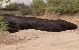 Rio de lama impressiona no Arizona, nos Estados Unidos