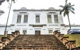 Covid-19: São Paulo quer dobrar produção de vacina no Butantan