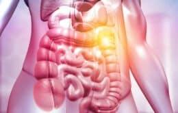 Homem faz transplante de fezes por produzir álcool no intestino