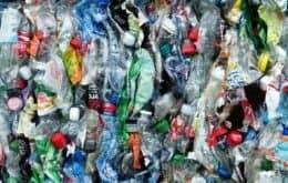 Pela primeira vez, cientistas acham microplástico em órgãos humanos