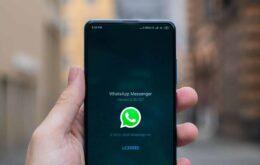 Mais de 400 mil brasileiros tiveram o WhatsApp clonado em setembro