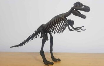 Record: T-Rex fossil sells for $ 31,8 million