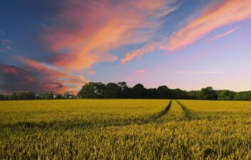 Alphabet X launches project to improve agricultural production