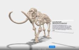 El Museo Smithsonian ofrece una colección de realidad aumentada