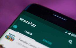 Novidade no WhatsApp: mensagens poderão desaparecer após sete dias