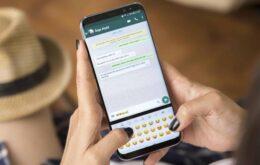 Nova função para silenciar vídeos no WhatsApp