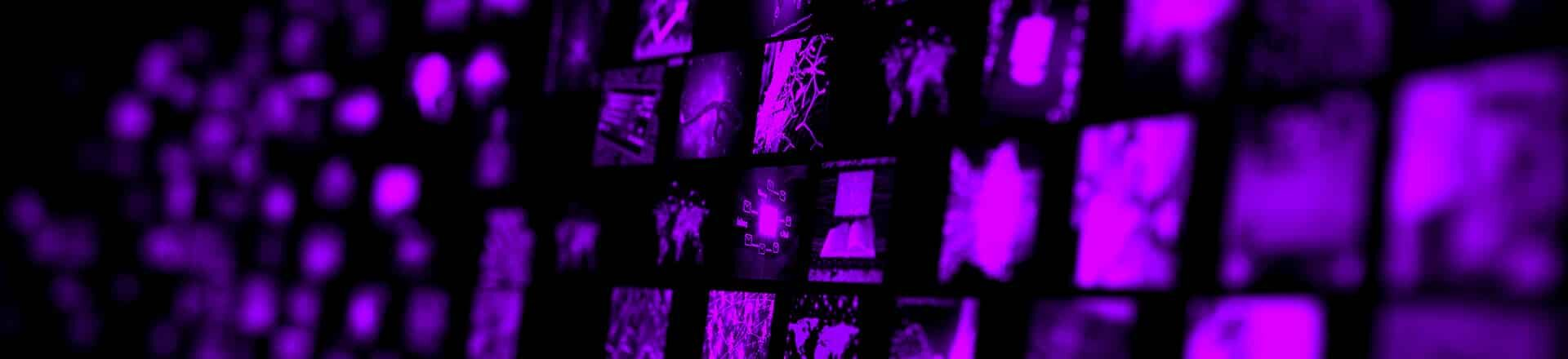 forehead_desktop_p-4