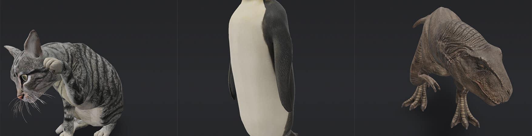 google-animais-3d-1755x450