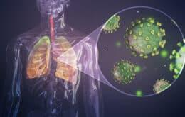 Pesquisadores brasileiros descobrem potencial mecanismo da Covid-19 nos pulmões