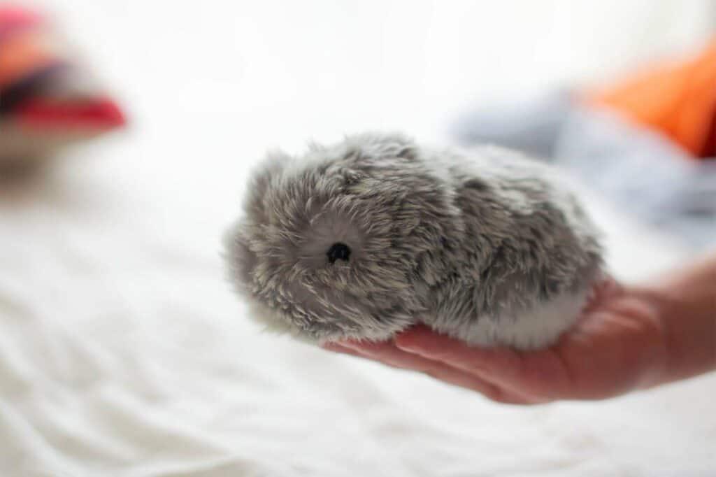 Hand holds Moflin robotic pet