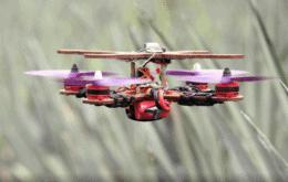 Conheça o drone sustentável feito de folhas de abacaxi