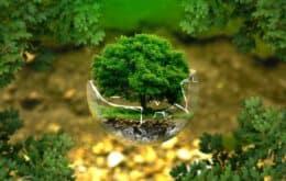 Campeões de Inovação Ambiental (E-Inovação)