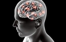 Cérebro de tribo indígena da Bolívia tem envelhecimento mais lento