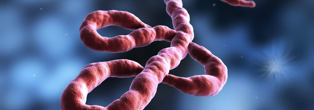 Vírus do Ebola