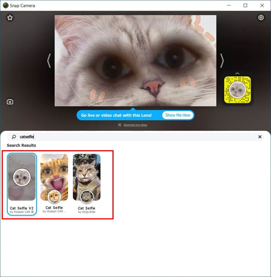 How to use the cat filter in video calls - Step 7