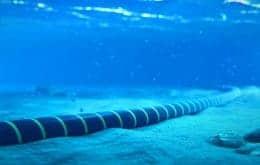 Los cables submarinos causan disputas entre EE. UU. Y China en los países del Pacífico