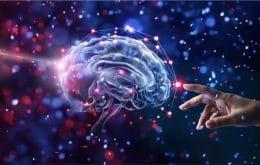 Neurociência e IA: pesquisadores produzem novo mapa de circuitos cerebrais