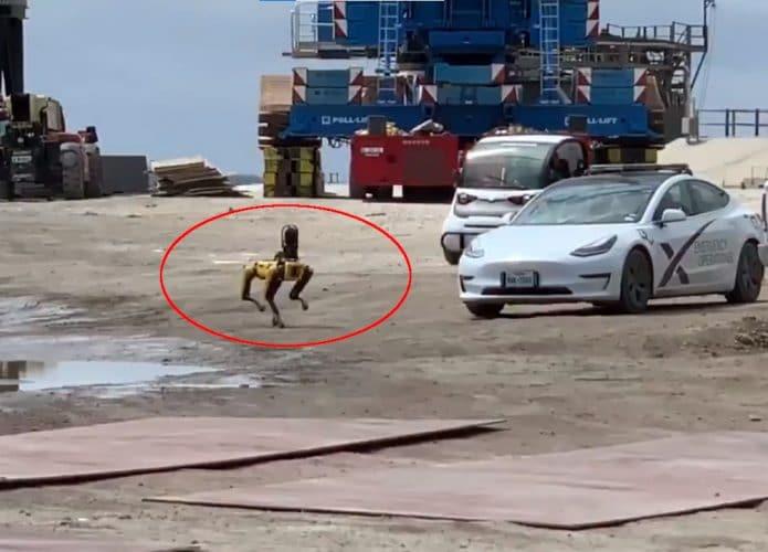 Zeus, cão robô da SpaceX baseado no Spot, da Boston Dynamics