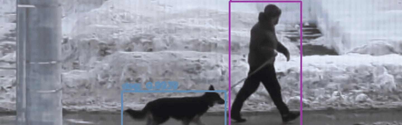 Machine learning treinada para reconhecer cachorros e seus donos