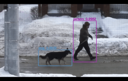 Youtuber treina máquina baseada em machine learning para elogiar cães