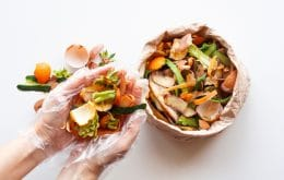 Energia ecológica: restos de comida vão servir de combustíveis para aviões