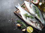 Empresa cria peixes em reatores como opção para o consumo de animais marinhos