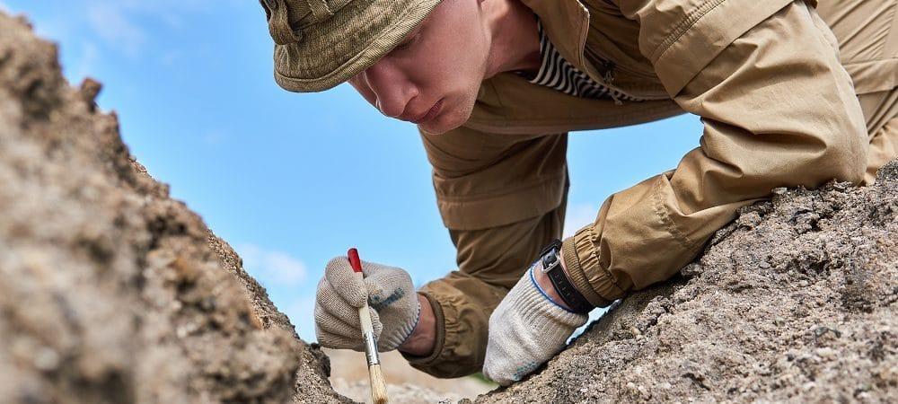Arqueólogo examinando fóssil