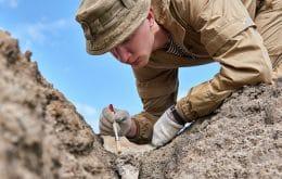 Fóssil de 1 bilhão de anos ajuda a entender a evolução dos animais