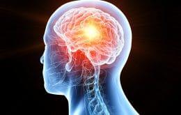 Técnica de microscópio examina dentro do cérebro sem cirurgia