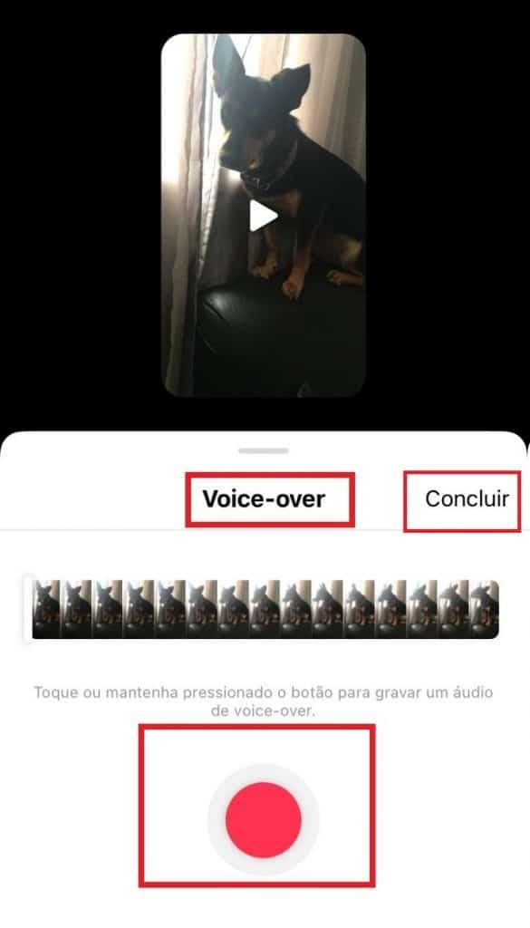 Saiba como usar a função Voice-over. Imagem: Olhar Digital